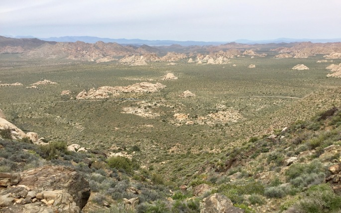 One view from the summit of Ryan Mountain