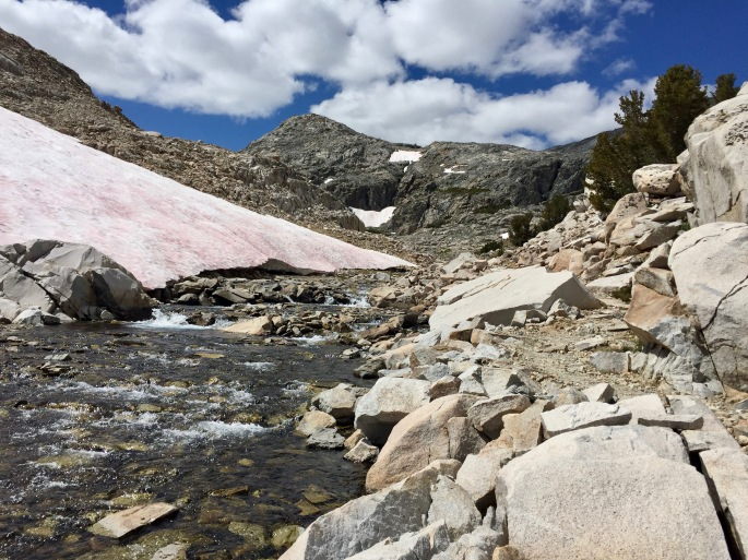 At this high mountain location, there is still enough snowmelt to support a significant stream.