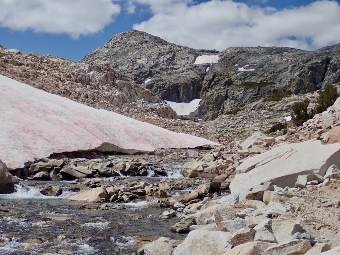 At this high mountain, there is still enough snowmelt to support a significant stream.