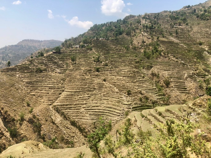 The Nepali have seemingly built terraces in every place possible.