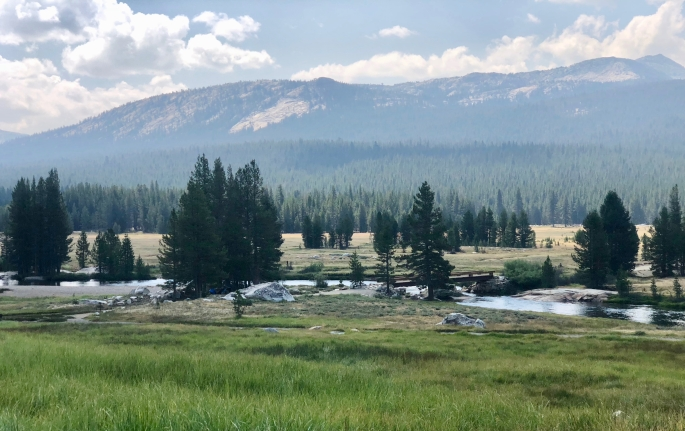 The Tuolumne River is placid as it flows through Tuolumne Meadows