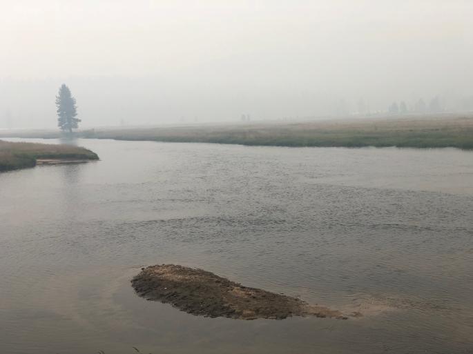 The smoke produces a foggy-like atmosphere