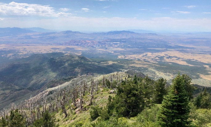 As the highest point in Washington County, Signal Peak offers some long views.